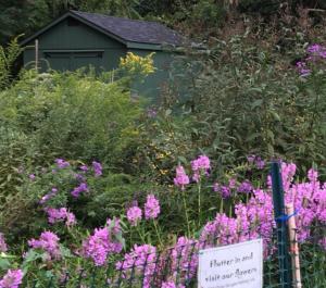 Benjamin Banneker Rain Garden Workshop and Maintenance @ Benjamin Banneker Historical Park and Museum